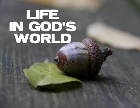 enjoy god through unbelievers